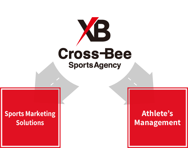 The Professionals of Sports Marketing
